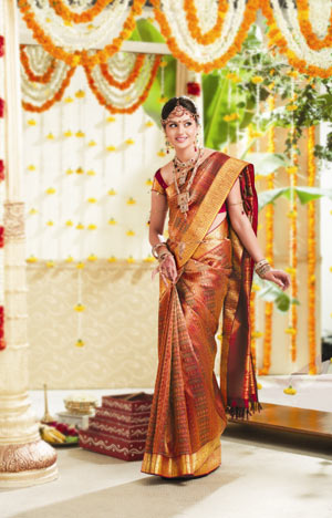 Wedding Pattu Saree
